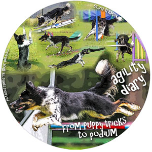 Agility Diary: From Puppy Tricks to Podium DVD