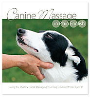 Canine Massage in Plain English