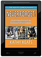 Never Forget! E-Book