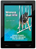 Weaves that Wow E-Book
