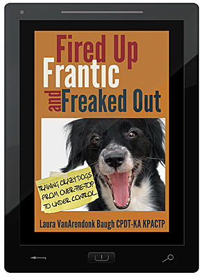Fired Up, Frantic and Freaked Out E-Book