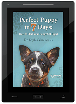 Perfect Puppy in 7 Days E-Book