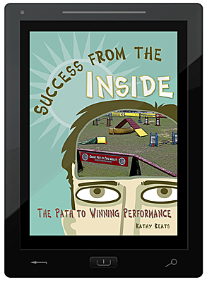 Success From the Inside E-Book
