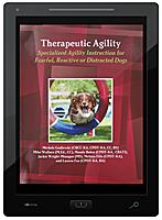 Therapeutic Agility E-Book