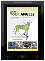 Whats Your Angle E-Book