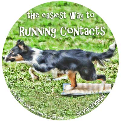 Easiest Way to Running Contacts DVD