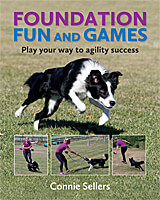 Foundation Fun and Games - Play Your Way to Agility Success