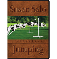 Foundation Jumping<br /> 4-DVD Set