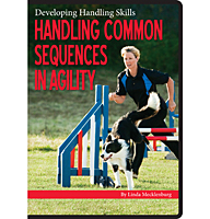 Handling Common Sequences in Agility DVD