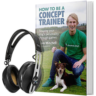 How To Be a Concept Trainer - Audio Book