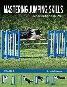 Mastering Jumping Skills for Awesome Agility Dogs