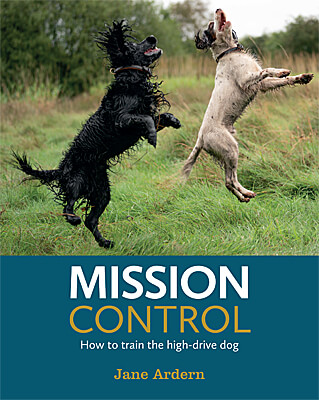 Mission Control - How to Train the High-Drive Dog