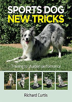 Sports Dog New Tricks - Training to Sharpen Performance