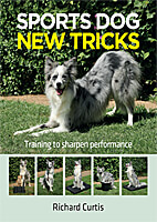 Sports Dog New Tricks - Training to Sharpen Performance