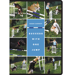 Success with One Jump 2-DVD Set