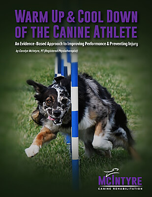 Warm Up and Cool Down of the Canine Athlete