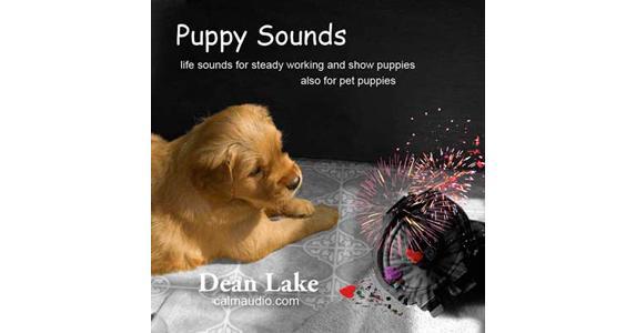 Puppy Sounds Cd Clean Run