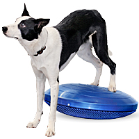 FitPAWS Balance Disc - Giant 22 in.