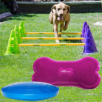 BUNDLE DEAL: Canine Gym Starter Kit