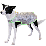 Chillybuddy Canine Cooling Jacket
