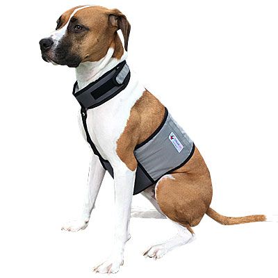Cooler Dog Ice Vest and Cooling Collar
