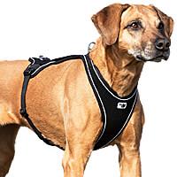 Curli Belka Comfort Harness