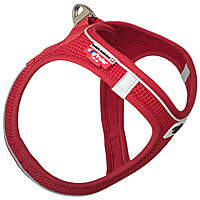 Curli Self-Closing Magnetic Harness