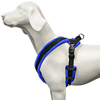 EEZWALKER Fleece-Lined Dog Harness