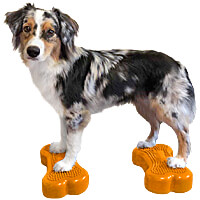 FitPAWS K9FITbone Balance Bones - Mini, Set of 2