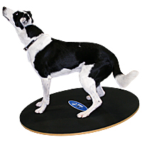 FitPAWS 36 in. Wobble Board