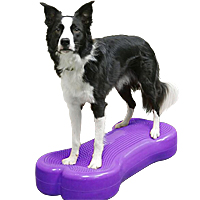 FitPAWS K9FITbone Balance Bone - Giant