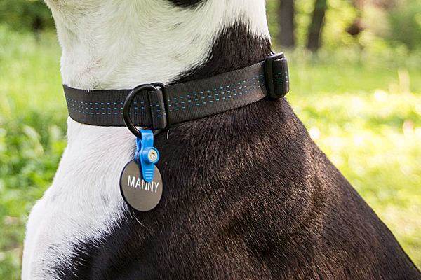 FreezeTag Dog Tag Holder