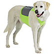 4-in-1 K9FITvest & Cooling Kit
