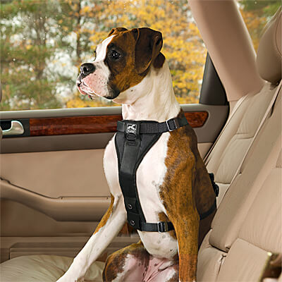 Kurgo Enhanced Strength Tru-Fit Smart Harness