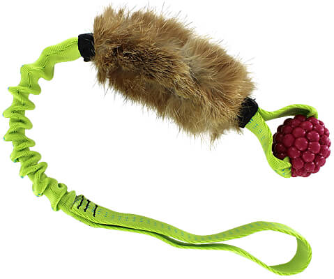 Rascally Raspberry Rabbit Tug