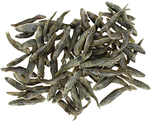 Scout & Zoes Bulk Dog Treats - Munchworthy Minnows, 2 oz