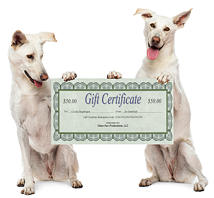 Gift Certificate - Send Paper Certificate By Mail