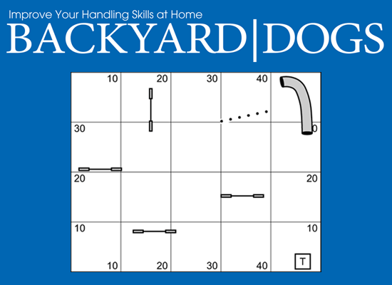 Backyard Dogs Episode 1 - Discriminations & Weave Poles