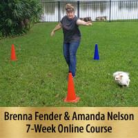 Beyond One More Step - 7-Week Online Course, Premier FEB 20