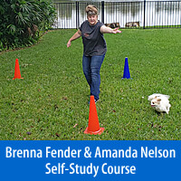 Beyond One More Step - Self-Study Course