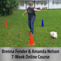 Beyond One More Step - 7-Week Online Course, Standard Registration