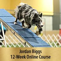 Fantastic Running Contacts - 12-Week Online Course, Premier Registration