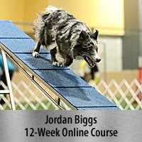 Fantastic Running Contacts - 12-Week Online Course, Standard Registration