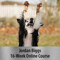 Tricks for Dog Sports - 16-Week Online Course, Standard Registration