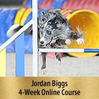Building Verbals for Agility - 4-Week Online Course, Premier Registration