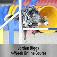 Building Verbals for Agility - 4-Week Online Course, Standard Registration