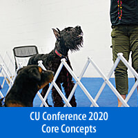 Control Unleashed® Core Concepts - On-Demand Presentations