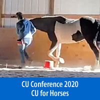 Control Unleashed® for Horses - On-Demand Presentations