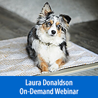 Slow Thinking Is Lifesaving for Dogs™: Why It's Important & How to Teach It - On-Demand Webinar