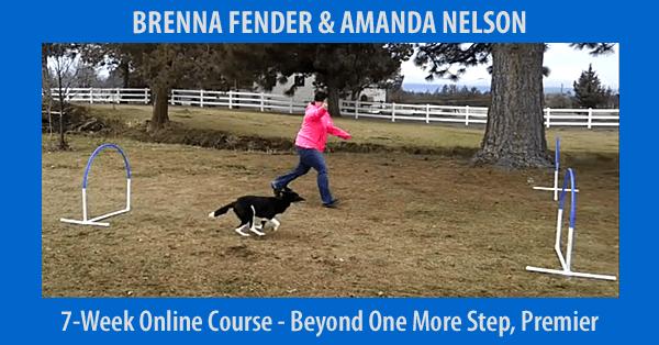 Beyond One More Step - 7-Week Course, Premier Registration